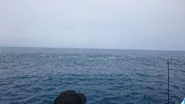 7・18 本日、ルアーマゴチとジギングで出船。